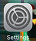 The Settings icon in iOS