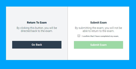 Return to Exam/Submit Exam options