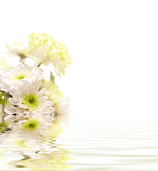 Reflected_flowers_226px