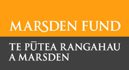 Marsden Fund logo