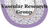 Vascular Research Group Logo