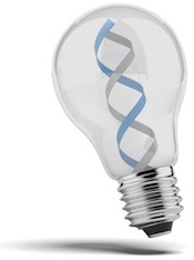 DNA in a lightbulb 2