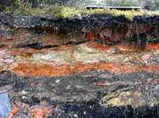 Baked Clay: Evidence of coal fires in Wangaloa overburden-orange material is from natural coal fires, stripped from above the coal during mining.