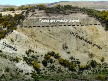Tilted mudstone and greywacke gravel (5 million years old) with younger greywacke gravels on top. Gold occurs at the boundary.
