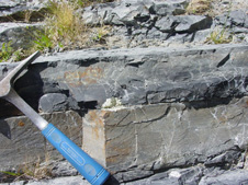 Photograph of outcrop in the Manuherikia River gorge at Fiddlers Flat, showing sedimentary bedding with greywacke (sandstone) at bottom, and argillite (mudstone) at top