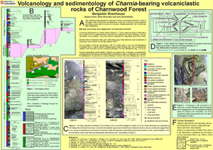 Volcanology and sedimentology of Charnia-bearing volcaniclastic rocks of Charnwood Forest