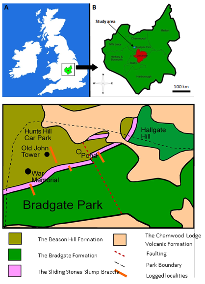 Fig. 1 (A) Location map of the study are Leicestershire with central England. (B) Location map of the study area within the Charnwood District, Leicestershire. (C) Simplified geological map of the north of Bradgate Park with logged sections highlighted (Modified from Ambrose et al. 2007).
