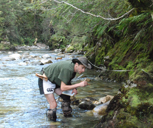 Jason Grieve logging the section through the Grebe mylonite zone in Jacquiery Steam, Fiordland.