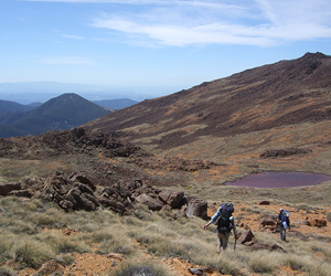 Geologists traverse the iron-rich landscape of the Red Hills Ultramafic Massif.