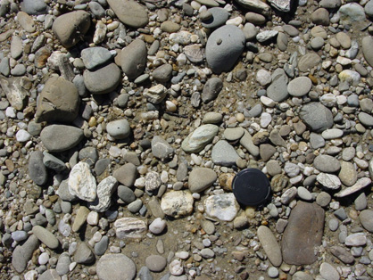 Gravel in the active bed of the Manuherikia River at Alexandra. Most of the cobbles are greywacke (round, grey and brown), with some quartz pebbles derived from breakdown of schist and/or 20 million year old quartz gravels.