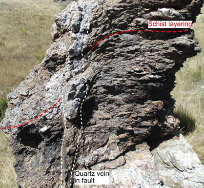 Quartz-rich fault zone with minor gold enrichment (between white dashed lines) in an outcrop of schist at Lower Manorburn Dam, near Galloway. The layering in the schist has been bent adjacent to the fault zone during fault movement 100 million years ago.The left (western) side moved downwards at that time.