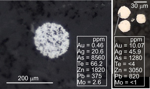 Microscopic view of clusters of minute pyrite grains (white, framboids) in argillite at Fiddlers Flat. Laser ablation ICP-MS analyses of the framboidal clusters show that they contain from 0.5 to 10 parts per million gold and more than 1000 ppm arsenic.