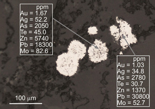 Microscopic view of clusters of minute pyrite grains (white, framboids) in sandstone at Fiddlers Flat. Laser ablation ICP-MS analyses of the framboidal clusters show that they contain from ~1 ppm gold and more than 2000 ppm arsenic. These framboids are also enriched in molybdenum.
