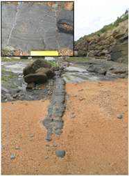 Thin dike found around Cape Wanbrow with banded vesicles