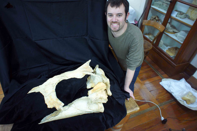 Holotype skull of Tohoraata raekohao with lead author Robert W. Boessenecker.