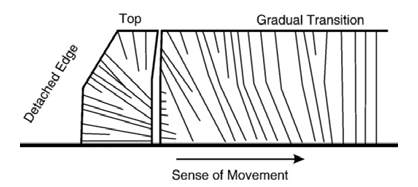 Diagram from Lodge and Lescinsky (2009b); fracture patterns in cornstarch in a tensional stress environment that is independent of isotropic contraction.