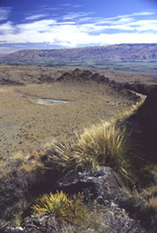 Overview of 'The Crater' volcano. Note the ridge in the background formed by Otago Schist. Cenozoic units are exposed only in the valley.