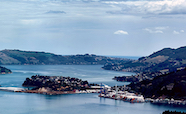 Otago harbour channel thumb