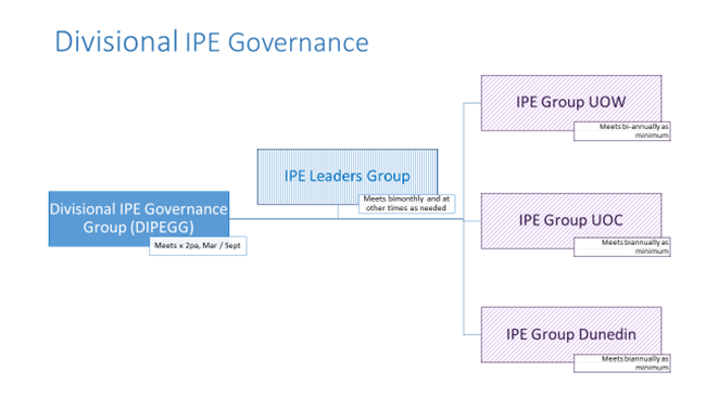 Interprofessional education governance pic