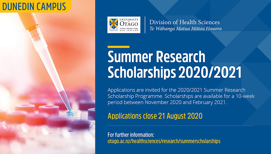 Summer Research Scholarship Recruitment Poster 2020-2021 image