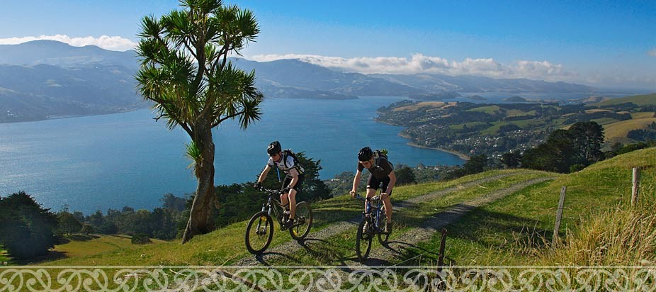 Cycling on the Otago Peninsula