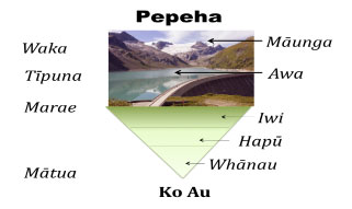 maori powhiri process Trying to learn maori we can help memorize these flashcards or create your own maori flashcards with cramcom learn a new language today.