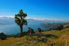 Mountain bikers on Otago Peninsula