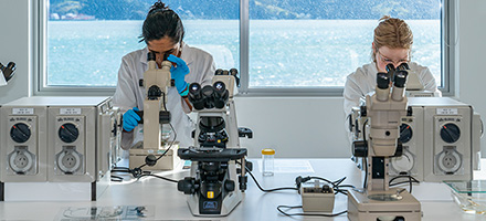 Students in the Portobello Marine Laboratory July 2020 Image 1x