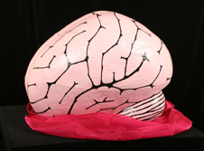 burlesque brain image