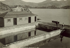 Portobello-Hatchery-small-image
