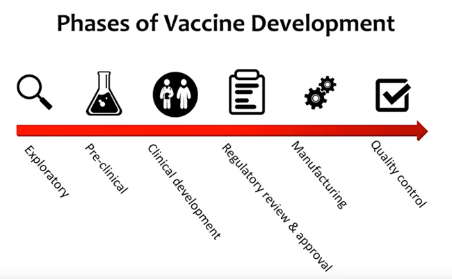 phases-of-vaccine-development-image