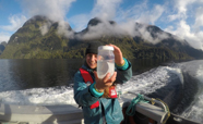 Millie-in-Fiordland-thumb