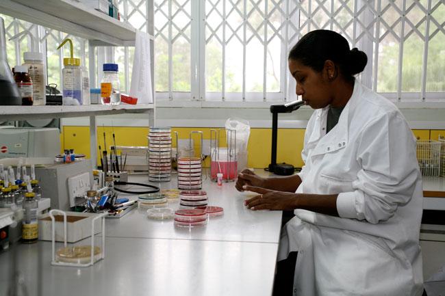 Lab Malawi