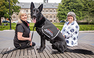 Bowel cancer detection dog Levi across from the Otago Clocktower thumbnail
