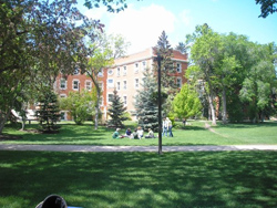 University of Alberta campus in summer