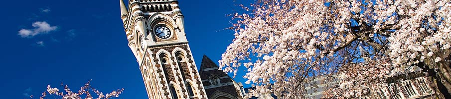 Blossom outside Clocktower