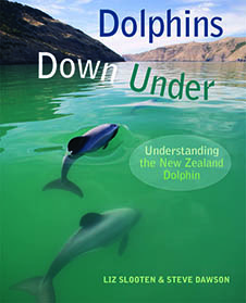 dolphins_down_under
