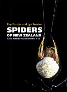 spiders_of_nz