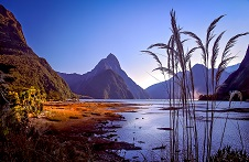 Milford Sound at Dawn 226