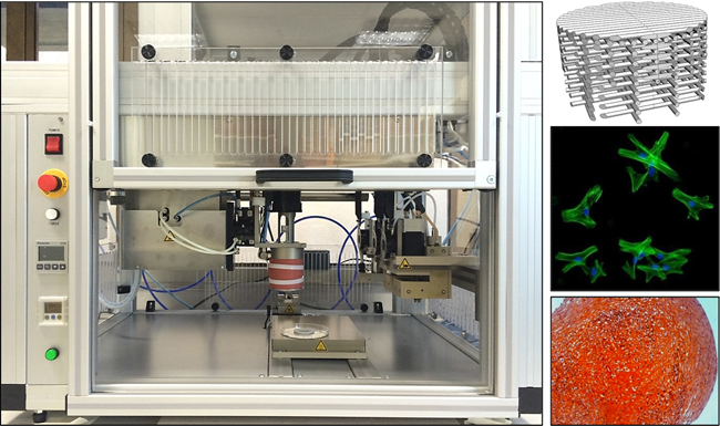 CReaTE Group 3D Bioprinter