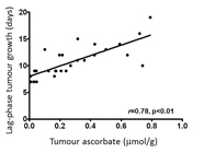 Increased levels of vitamin C (ascorbate) in tumours is associated with slower tumour growth
