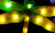 This beautiful dragonfly was one of the many lanterns hanging from the trees in Hagley Park for the 2016 Christchurch Lantern Festival<br />Photo: Anna Young