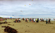 Panorama shot of the kite festival at the New Brighton Pier (2017)<br />Photo: Simran Maggo