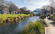 The Avon River near the University of Otago, Christchurch campus