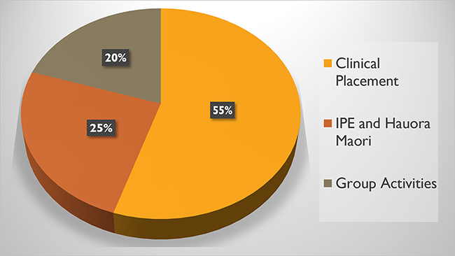 Time spent pie chart, showing Clinical placements (55%), IPE and Hauora (25%) and Group activies (20%).