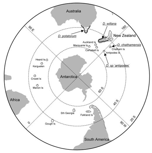Fig.-4-Distribution-of-buoyant-Durvillaea-antarctica-(dotted-lines)-versus-non-buoyant-Durvillaea-species-(arrows;-thick-lines)