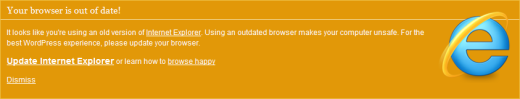 IE browser warning message
