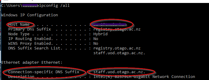 The ipconfig window showing host name details