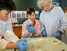 Biotechnology and Genetics experiments at Wellington High School, with Dr Sara Filoche